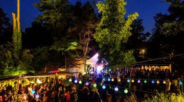 Nachts im Park, Bäume, beleuchtet, Lichterketten, dunkelblauer Himmel und Menschen