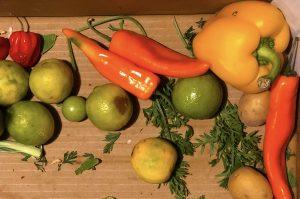 Limette, Paprika, gelb, Gemüse, frisch, Markt, SoKü