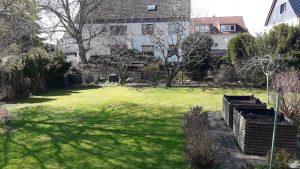 Ein Garten im Frühling mit grünem Gras und Obstbäume beginnen zu blühen.